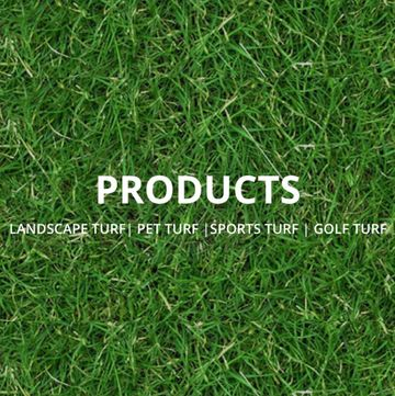 ez grass products